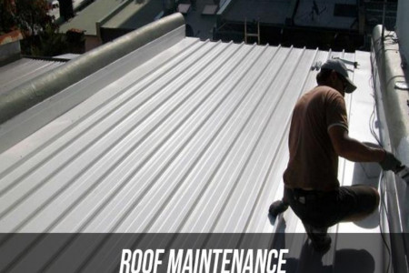 Brief About Roof Maintenance Infographic