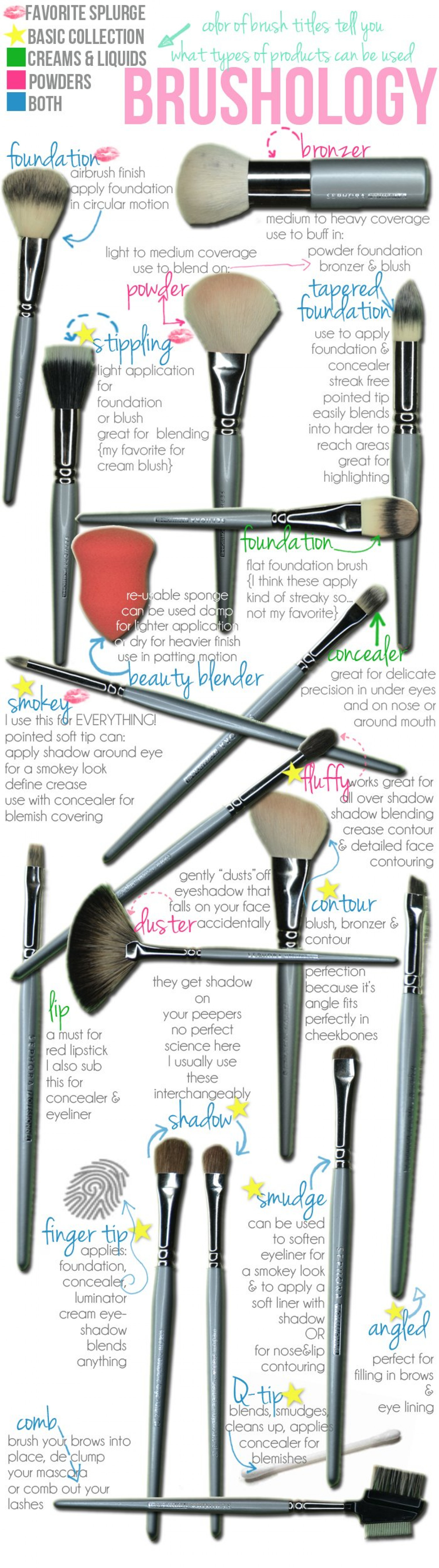 Brushology - Brief overview of makeup brushes Infographic