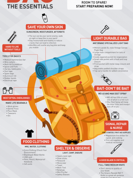 Bug-Out Bag Essentials Infographic Infographic