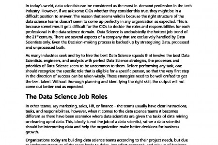 Building the Best Data Science Teams Infographic
