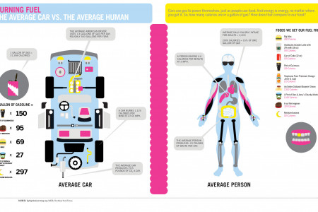 Burning Fuel: The Average Car vs. The Average Human  Infographic