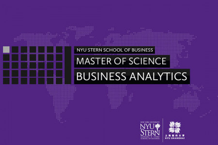 Business Analytics Infographic