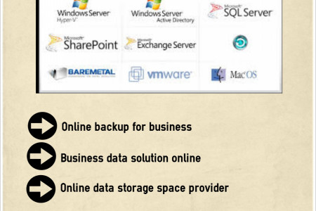 Business data solution - online backup Infographic