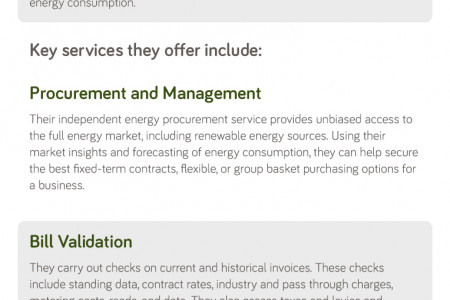 Business Energy Review Infographic