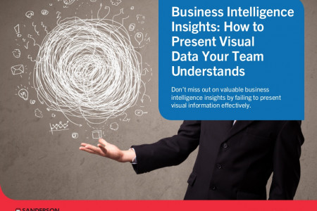 Business Intelligence Insights: How to Present Visual Data Your Team Understands Infographic