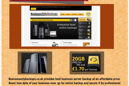 Business online backup Infographic