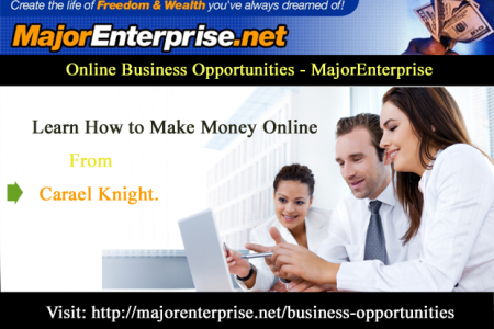 Business Opportunities Ideas Infographic