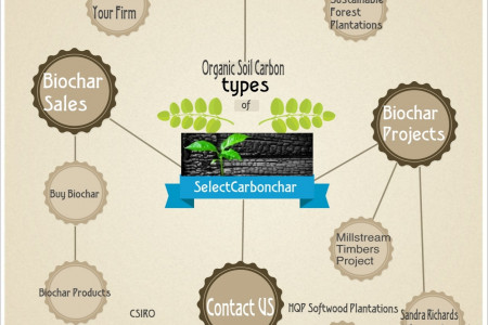 Buy Biochar, Fertilizer with Carbon Credits at Selectcarbonchar Infographic