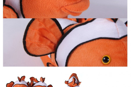 Buy Clown Fish Shoes at Buy Happy Feet Infographic