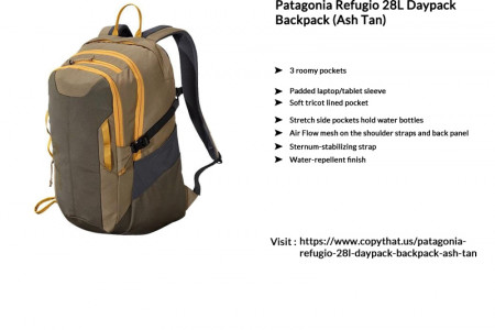 Buy Patagonia Refugio 28L Daypack Backpack Infographic