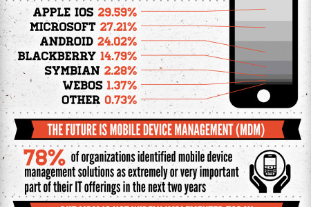 BYOD on the rise, but uncertainty remains Infographic