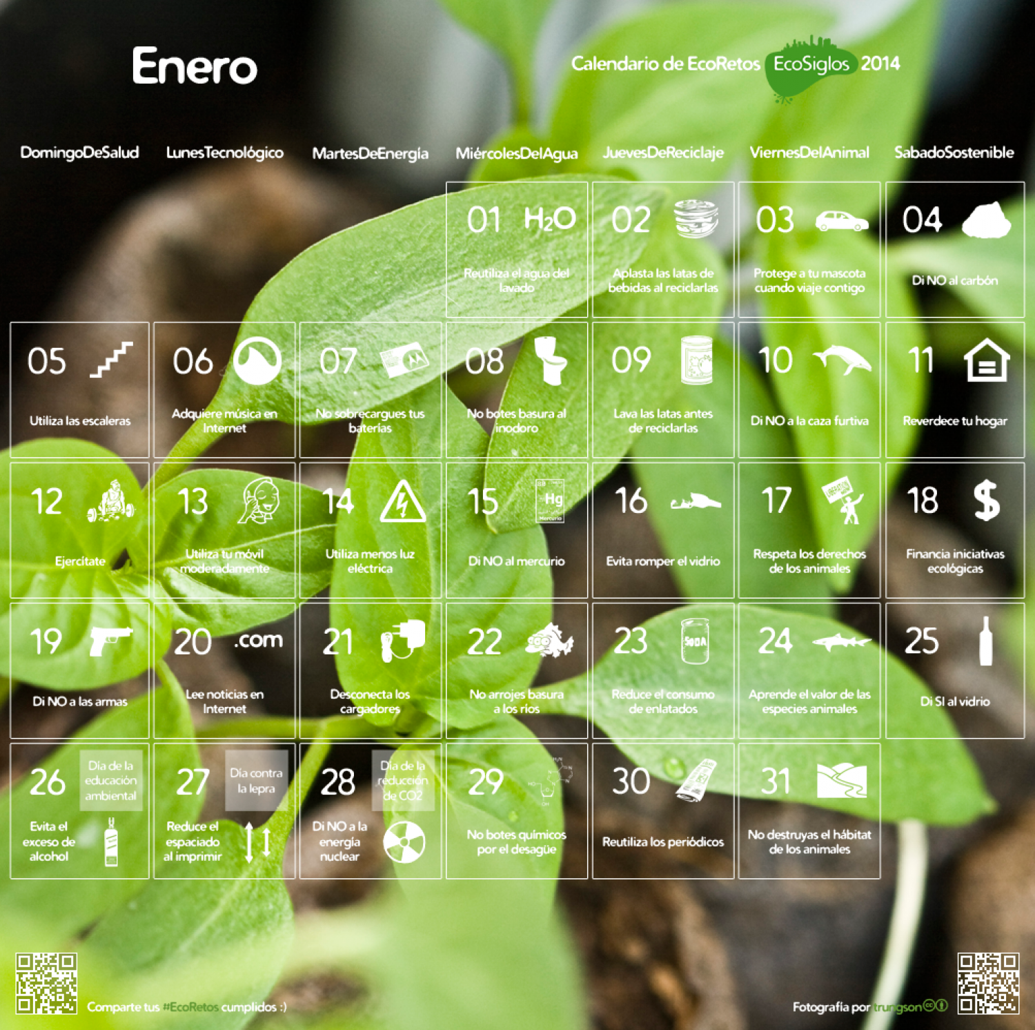 Calendario de EcoRetos 2014 - Enero Infographic