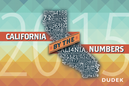 California by the Numbers Infographic