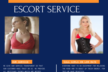 call girls service on low rate in Zirakpur +91 7901987893 Infographic