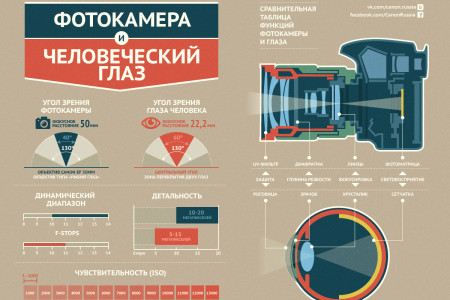 Camera and human eye Infographic