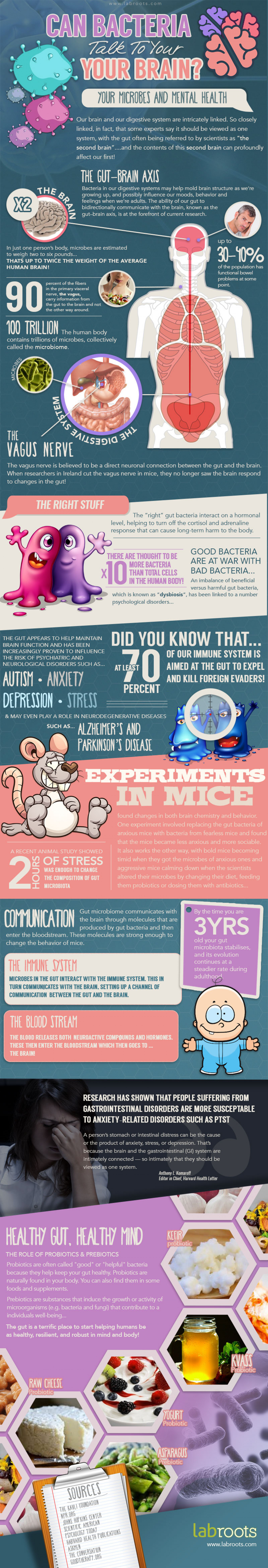 Can Bacteria Talk to Your Brain? Infographic
