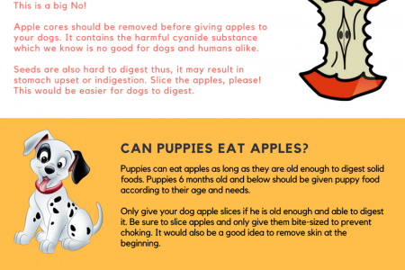 can dogs eat apples Infographic
