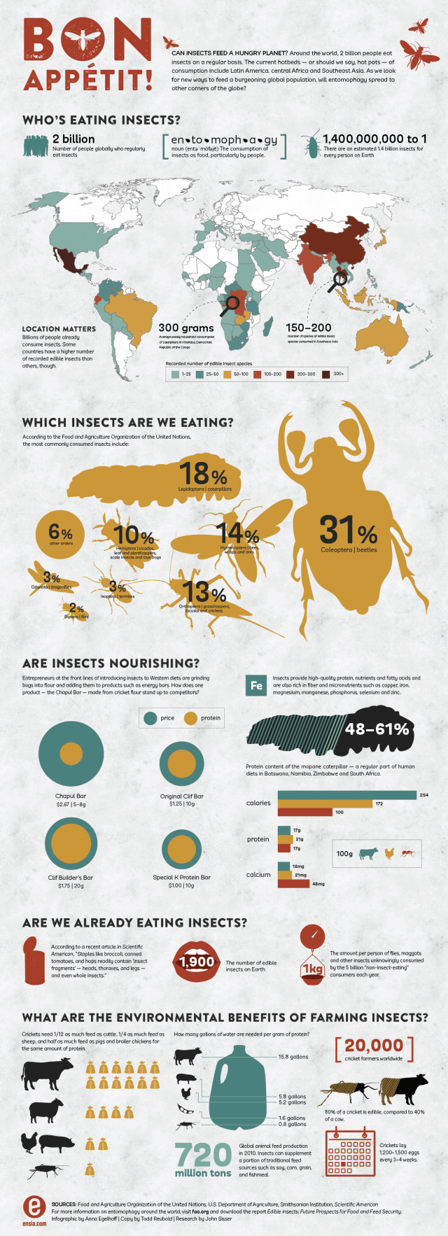 Can Insects Feed a Hungry Planet?