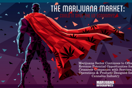 Can Marijuana Save the US Economy? Infographic