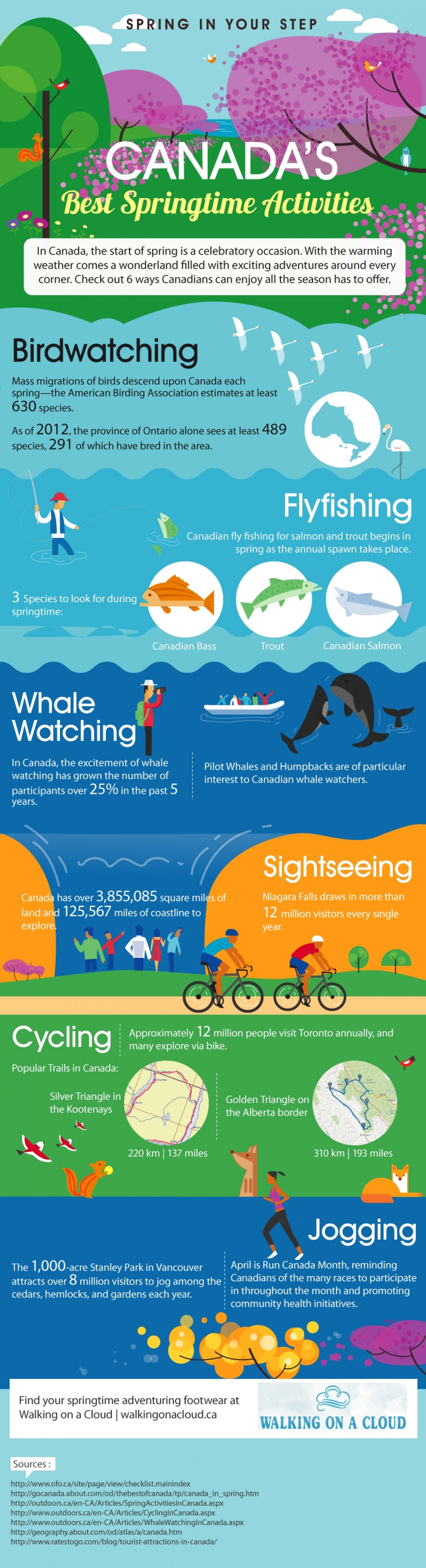 Canada's Best Springtime Activities Infographic