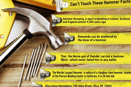 Can't touch these hammer facts Infographic