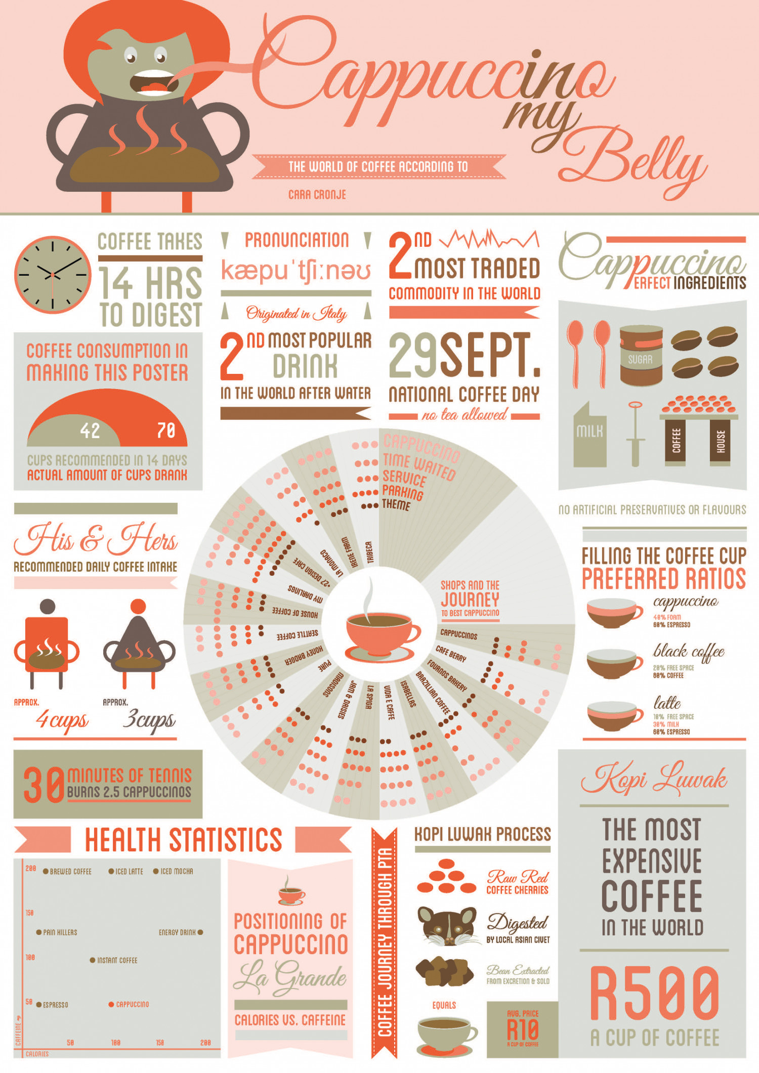 Cappuccino in my Belly Infographic