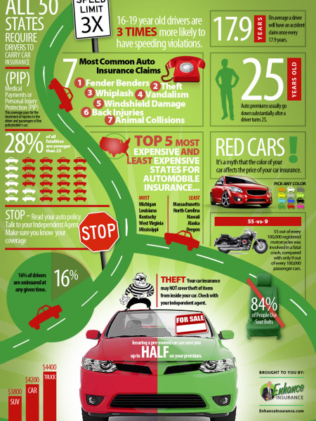 Automobile Insurance Facts Infographic