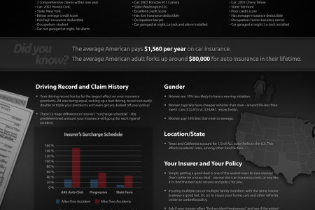 Car Insurance Infographic Infographic