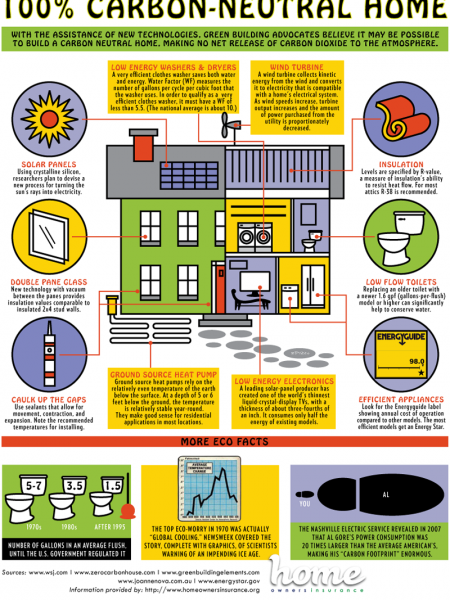 Carbon-Neutral Homes Infographic