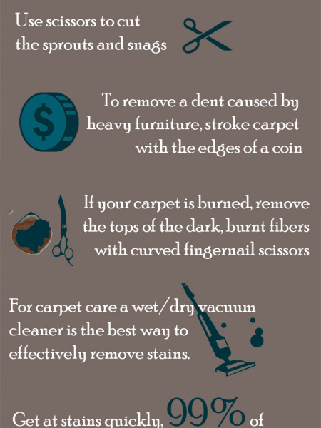 Carpet Cleaning Tips Infographic