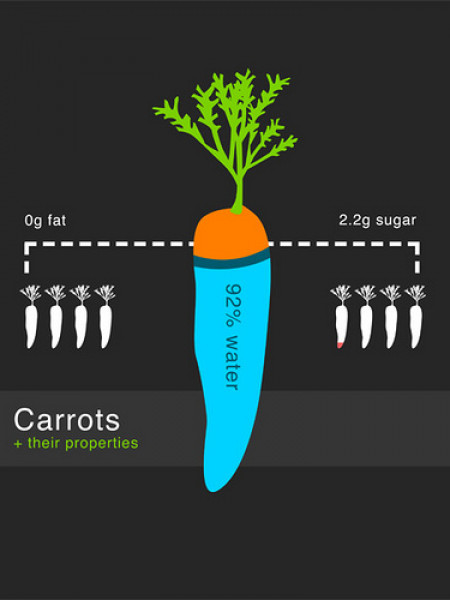 Carrots Infographic