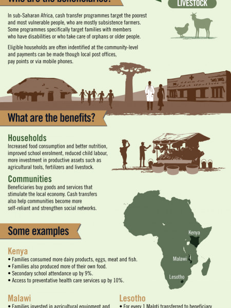 Cash Transfers: Promoting Sustainable Livelihoods in Sub-Saharan Africa Infographic