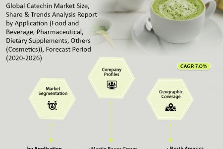 Catechin Market: Analysis Report, Share, Trends and Overview 2020-2026 Infographic