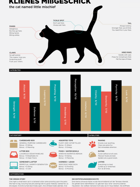 Catfographic Infographic