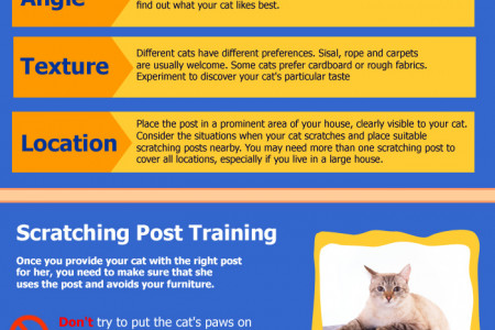 Cats: Problem Scratching And How To Stop It Infographic