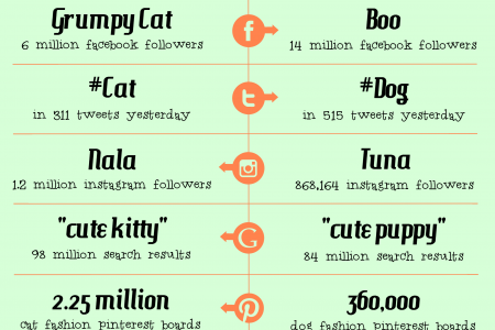 Cats vs Dogs: Who rules the internet? Infographic