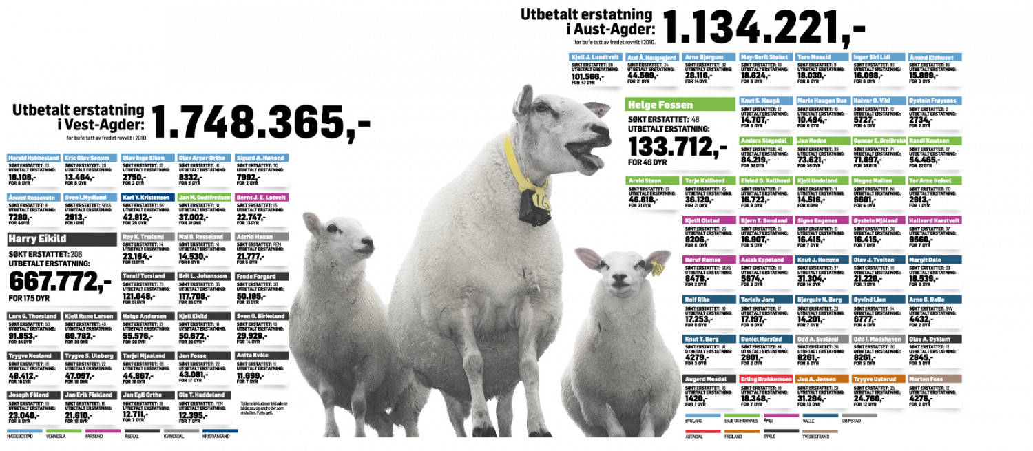 Cattle eaten by wolfs Infographic