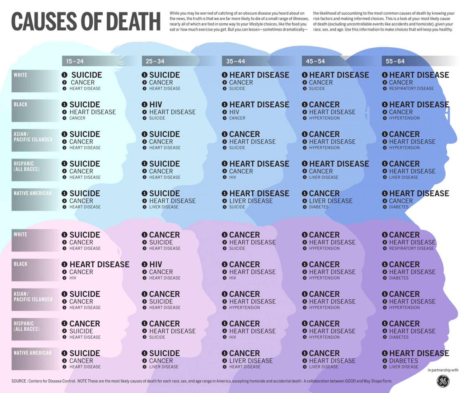Causes of Death Infographic