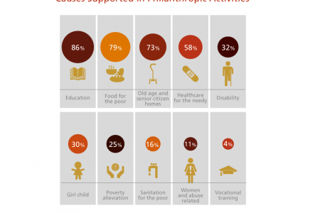 Causes Supported in Philanthropic Activities Infographic