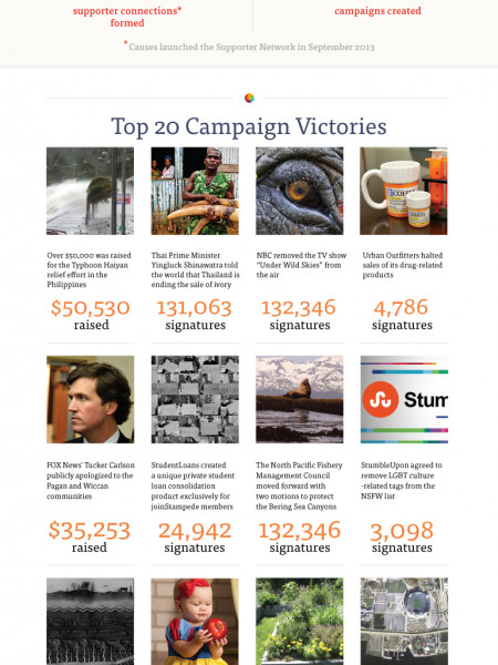 Causes.com: Looking Back on 2013 Infographic
