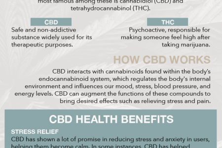 CBD - What Is It? Infographic