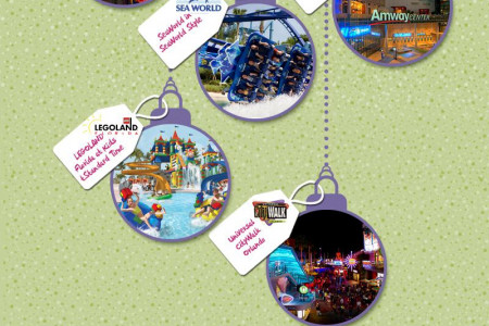 Celebrate Christmas and New Year Eve in Special Way in Florida Infographic