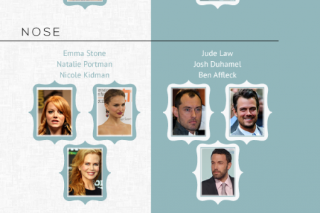 Celebrities and plastic surgery Infographic