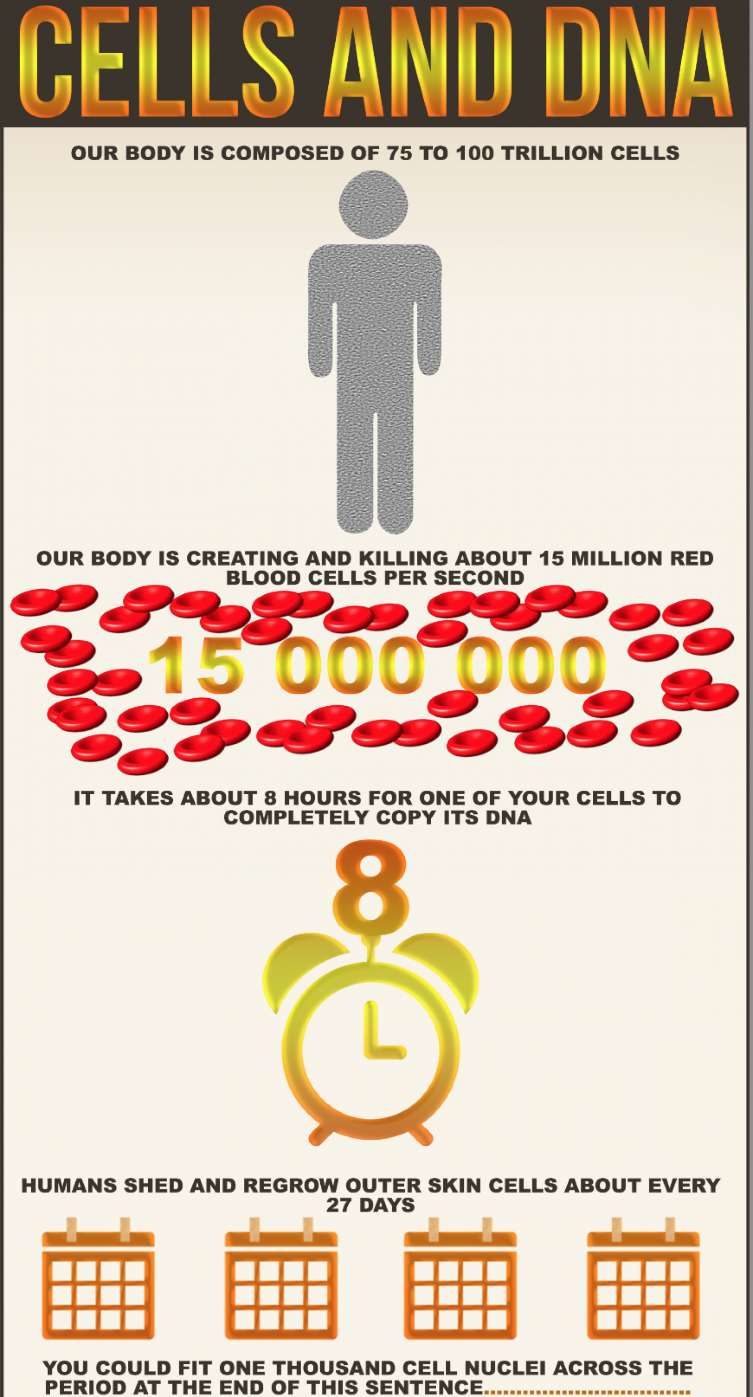 Cells and DNA Infographic