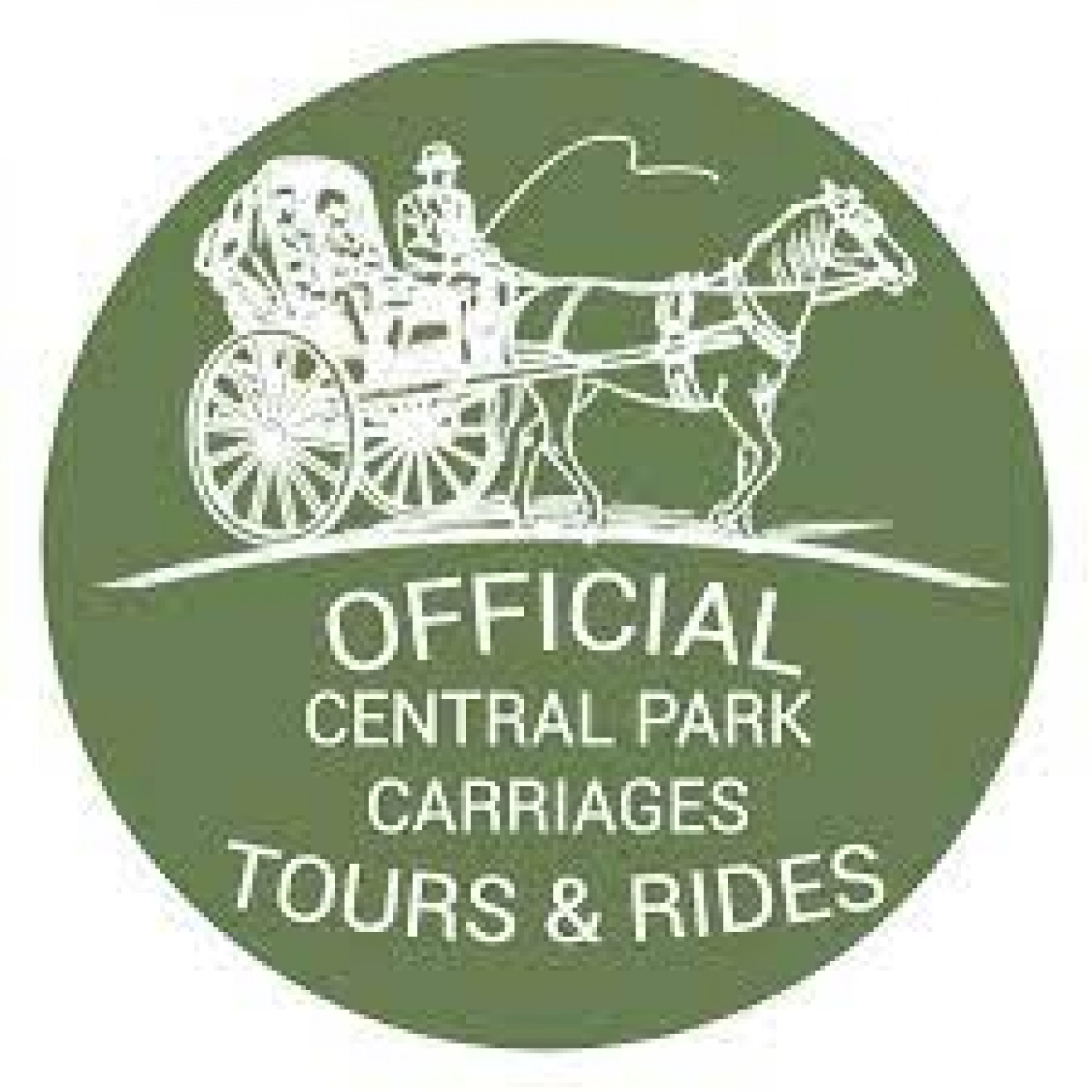 Central Park Carriages Infographic