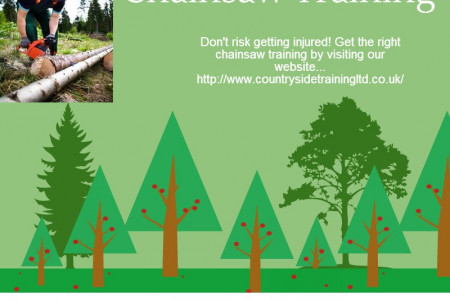 Chainsaw Training Infographic
