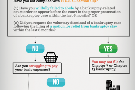 Chapter 7 Bankruptcy and Chapter 13 Bankruptcy: Which One is Right for You? Infographic