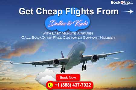 Cheap Flights From Dallas To Kochi Infographic