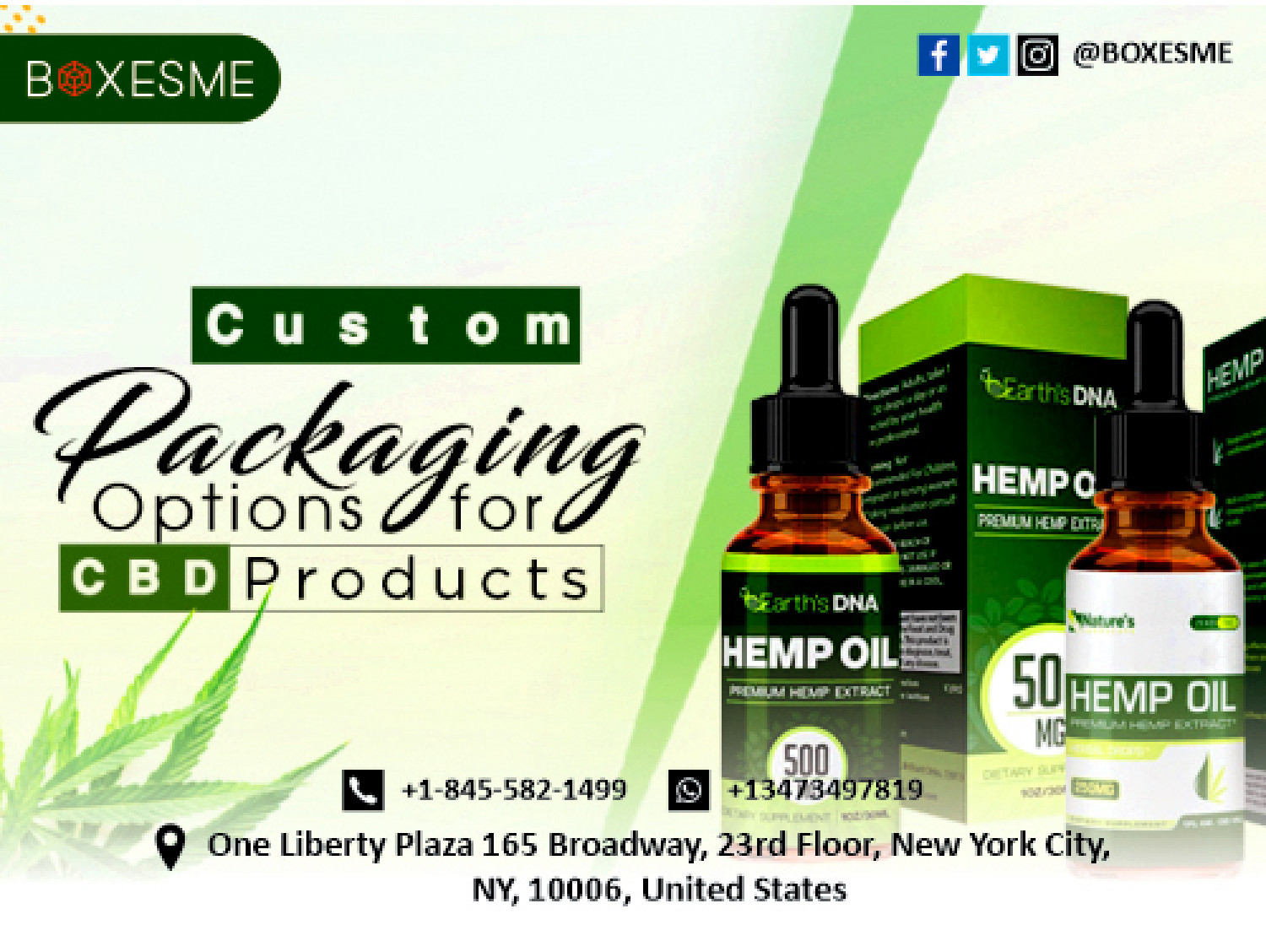 Check out Our Various Selections of CBD hemp oil boxes Infographic