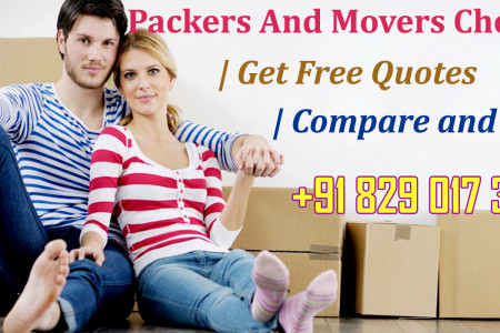 Chennai Movers And Packers Specialist Masterminded To Pass On Best Associations Infographic